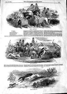 Antique Print 1848 Hare Coursing Match Grey Hounds Dogs Sport Horses 389P113
