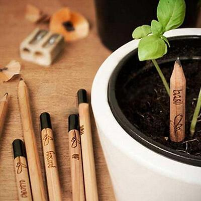 8 Pieces Sprouting Bud Sprout Pencil Planting Herb Basil Tomato Green Pepper RT
