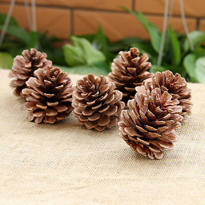 10PCS Christmas Pine Cones Baubles Xmas Tree Decorations Ornament Gift Decor SEA