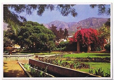The Gardens At Montagu  - Cape - South Africa Postcard Unused