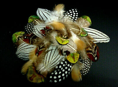 #1 Mix Silver Pheasant, Timminicks, Peacock, Guniea Plumage Feathers- US Seller