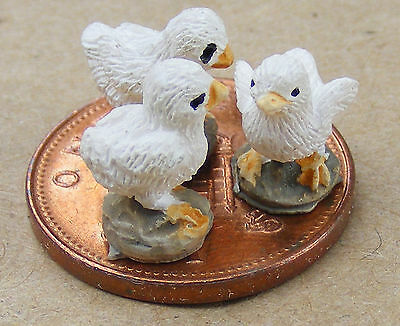 1:12 Scale 3 White Resin Chicks Dolls House Miniature Garden Accessory
