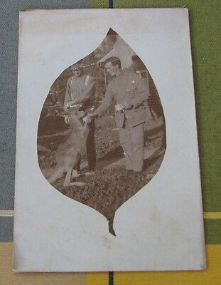 Real Photo Ww1 Wounded Soldier With Kangaroo Booloominbah Red Cross Home #7