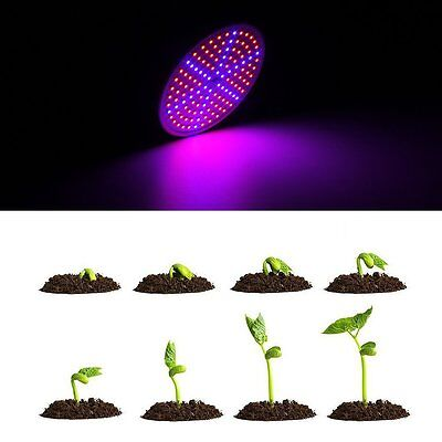 E27 20W Full Spectrum LED Grow Light Growing Lamp Bulb For Flower Seed Plant Veg