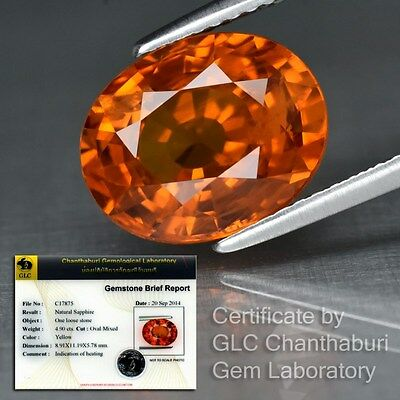 Big Rare! 4.90ct 11x9mm Oval Natural Yellow Sapphire, Thailand *GLC Certified