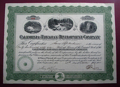 #350 - neat 1921 CALIFORNIA HAWAIIAN DEVELOPMENT stock certificate HONOLULU & CA