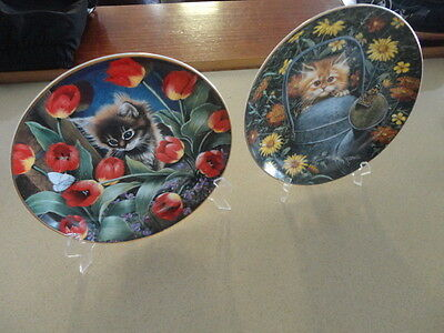 Two Royal Doulton Franklin Mint Kitten Collector Plates