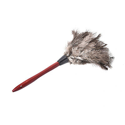 38cm Ostrich Feather Duster Brush Wood Handle Anti-static Natural Grey Fur SEAU