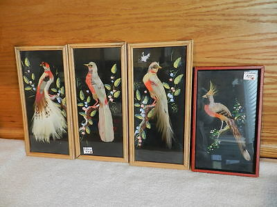 4 Vintage Bird Pictures made with Feathers Framed
