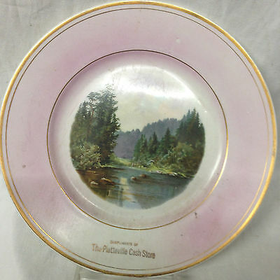 Platteville Cash Store Advertising Complementary Souvenir Plate Wisconsin Pink
