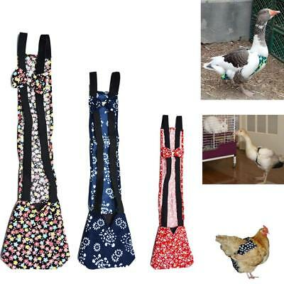 3 Size Pet Goose Duck Chicken Poultry Adjustable Easy To Use Cloth Diaper Farm %
