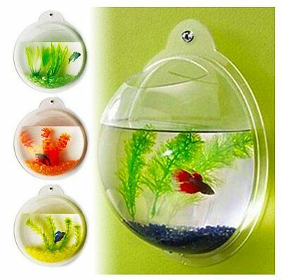 Aquarium Wall Hanging Tank/ Plant Decoration Bubble Bowl