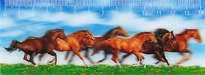 3D - Lineal: galoppierende Pferde - horses in the green fields - chevaux