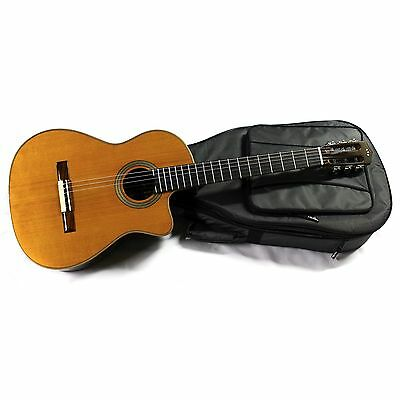 Cordoba Fusion 12 Orchestra CE CD/IN Acoustic/Electric Nylon String