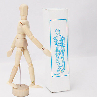 Male Wooden Artist Mannequin Lay Figure Manikins Movable Limbs Humans Display