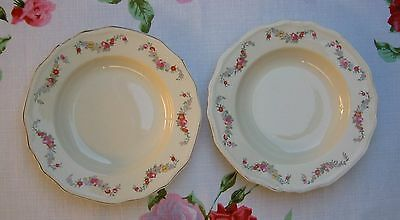 2 VINTAGE ALFRED MEAKIN 9 INCH SOUP PLATES BOWLS - Multi Coloured Floral