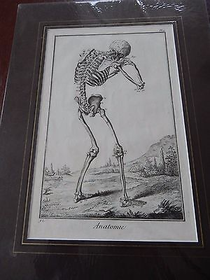 DOCTOR SURGEON ANATOMICAL  superb  mounted Late 1700s engraving GIFT POTENTIAL c