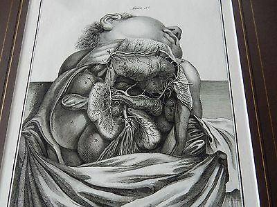 DOCTOR SURGEON ANATOMICAL superb mounted Late 1700s engraving GIFT POTENTIAL q