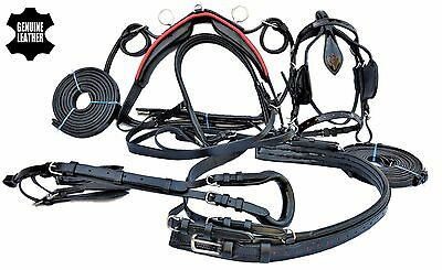 Genuine Leather Horse Driving Harness In Black Color With Red Patent Top Quality