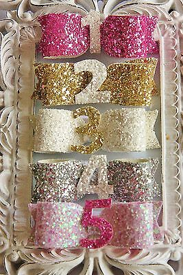 Handmade Glitter Baby Girls Bow Hair Clip Birthday Cake Smash Photo Number Party