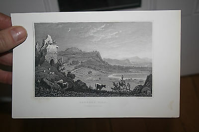 DELICATE steel plate engraving CAMARTHENSHIRE  early 1800 s vgc   t