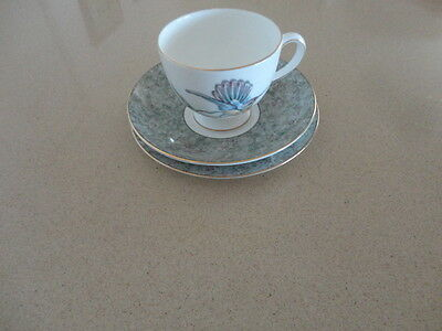 Wedgwood Humming Birds Cup, Saucer & Plate