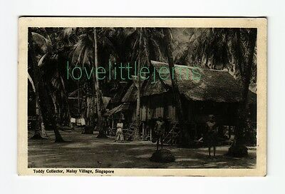 c1910 PPC Toddy Collector Malay Village Singapore