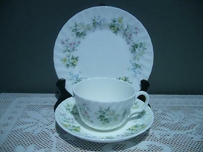 Vintage Minton Spring Valley Bone China Trio - Cup Saucer Plate - England - Vgc