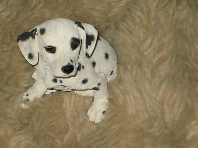 Country Artists Dalmation Puppy
