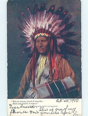 Pre-1907 Tuck LARGE DETAILED VIEW OF NATIVE INDIAN AMERICAN CHIEF HL6848