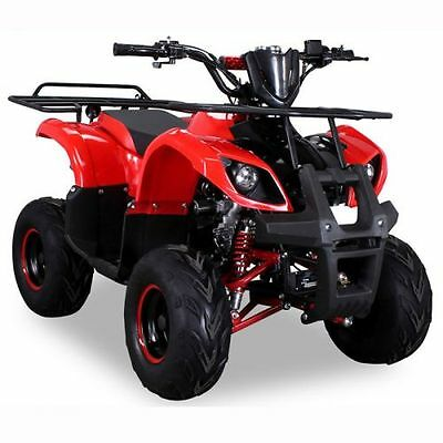 Quad 125cc S-8 rot Miniquad ATV Kinderquad Pocketquad Pocketbike Kinderquad