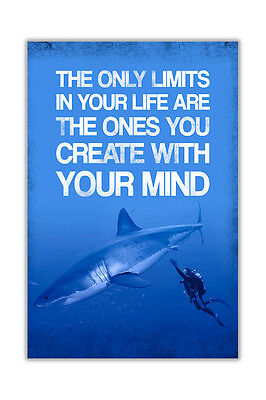Limits In Your Life Shark and Diver Poster Prints Wall Art Pictures