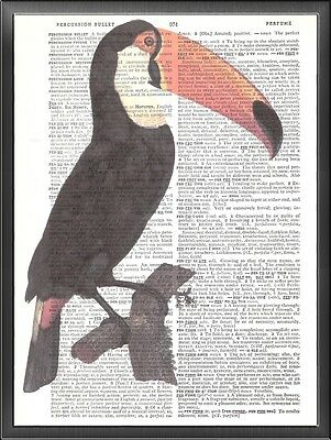 Exotic Toucan Bird Altered Art Print Upcycled Vintage Dictionary Page