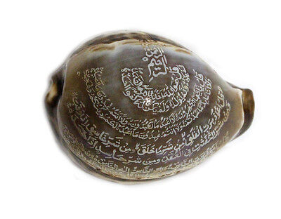 Islamic Religious Quran Surah Engraved Tiger Cowrie Sea shell - FREE Shipping