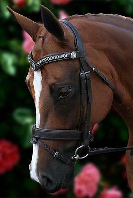 NEW Havana Leather Horse Bridle Silver Chain V with reins - All Sizes ON SALE