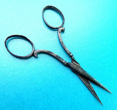 Antique Early 19Th C Sewing  Scroll Handle Scissors. Echo.