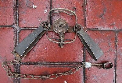 Vintage Oneida Victor #11 Double Longspring-- Double Jaw Steel Trap-- Excellent!