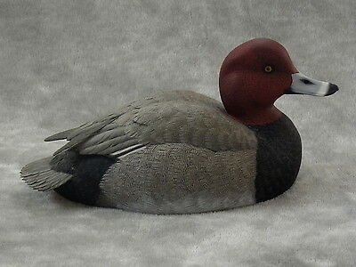 Original  REDHEAD DUCK  Wood Carving