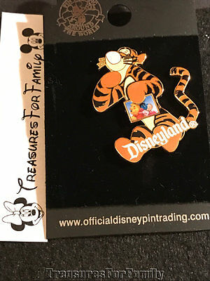 Disney Pin Winnie the Pooh Tigger Holding Photo Picture Piglet Eeyore NEW