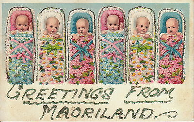 Babies Flowers  Greetings From Maoriland Postcard Vintage Rare New Zealand