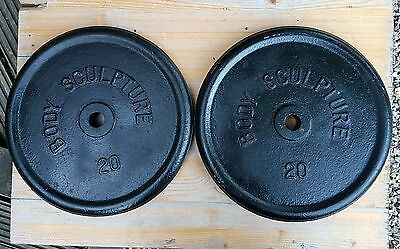 2 x 20kg metal gym barbell weights