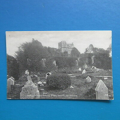 Old Postcard of Muckross Abbey from South, Killarney.