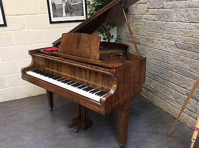 1930 Steck Overstrung Baby Grand Piano -Built In Temperature Gauge- CAN DELIVER