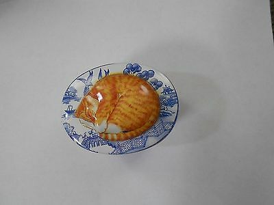 Embossed Oval Orange Cat Tin 3-1/8 X 2-1/2 Inches Excellent Displayed Condition