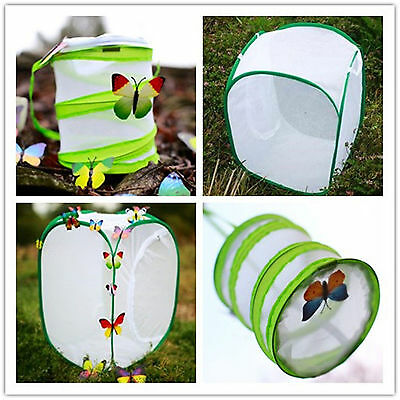 Anti Insect Box Mini Plant Greenhouse Cultivation Room Butterfly Pet Net Cage