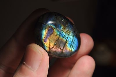 Natural Labradorite Polished Stone - 20 Grams - Blue-Purple Flash