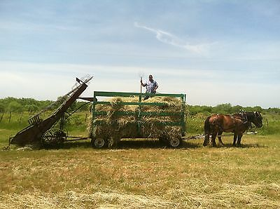 Loose Hay Loader, Ground Drive - Horse or Tractor pulled