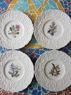 Royal Cauldon Bristol Ironstone Woodstock vintage decorative plates x 4