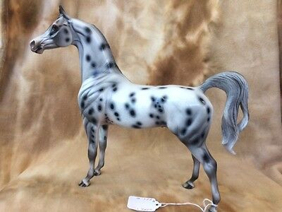 """Peter Stone 2014 Equilocity Auction Model """"Spoticus"""" Extreme Appaloosa Arabian"""