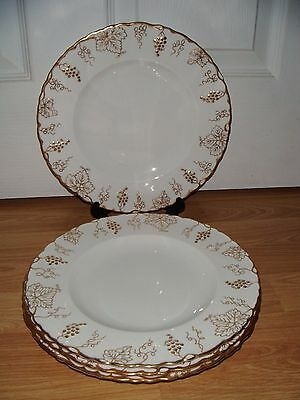"4 Royal Crown Derby Vine 10"" Dinner Plates ~ White ~ 1st Quality ~ Excellent"